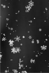 Yuji Obata. Homage to Wilson A. Bentley #10.  2005 - 2006.  23 1/2 x 16 3/4 inch pigment print.