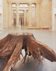 ANYA GALLACCIO Installation view, Tate Britain