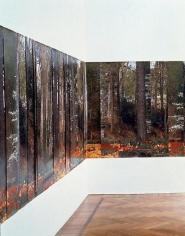 Stefano Arienti Installation view