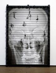 NARI WARD Riot Gate Skull front view, 2010