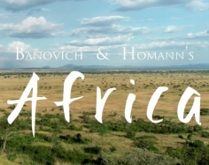 Banovich & Homann's Africa 2018 (Video)