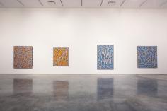 Nicholas Krushenick (Installation View), Marianne Boesky Gallery, 2007