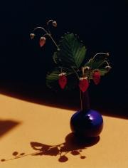Horst, Strawberries in Blue Vase, c. 1985