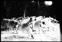 Arthur Elgort, Snowflakes, The Nutcracker, The School of American Ballet, New York, 1980
