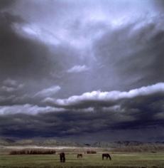 Michael Eastman, Horses, Montana