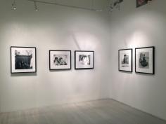 Richard Avedon, Exhibition View