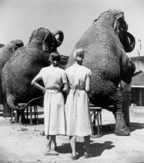 Louise Dahl-Wolfe, Twins with Elephants, Sarasota, 1947