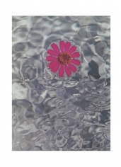 Isabella Ginanneschi, Liquid Bliss 9, 1993