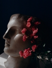 Horst, Roses with Antique Head