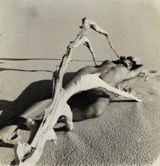 Herbert Matter, Nude with Driftwood