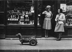 Robert Doisneau, Le Chien à Roulettes, 1977
