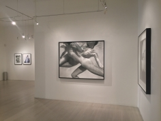 Patrick Demarchelier, Exhibition View