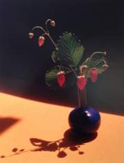 Horst P. Horst, Strawberry in Blue Vase