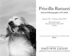 Priscilla Rattazzi, Exhibition Invitation