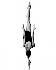 Howard Schatz, Balance