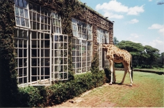 Arthur Elgort, Rubbernecking, Kenya, VOGUE, 2007
