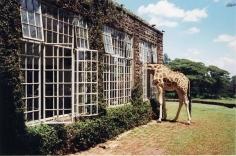 Arthur Elgort, Rubbernecking, Kenya, VOGUE, 2007