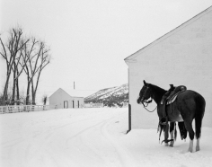 Kurt Markus, YP Ranch, Tuscarora, Nevada, 1981