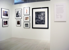 America the Beautiful, Exhibition View