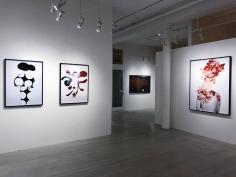 Erik Madigan Heck, Exhibition View