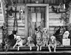 Bruce Weber, The Gang at Little Bear Ranch, McLeod, Montana, 1995