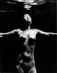 Michael Dweck Mermaid 78