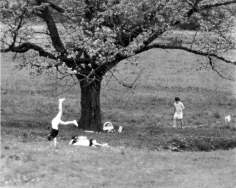 Ron Galella, Jackie Onassis, John Jr., and Caroline Kennedy Enjoying a Picnic, Peapack, New Jersey, 1969
