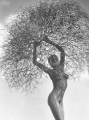 Herb Ritts, Neith with Tumbleweed, Paradise Cove, 1986