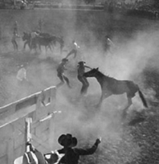 Andre de Dienes, Wild Horse Riding Contest at the Rodeo, Arizona 1950
