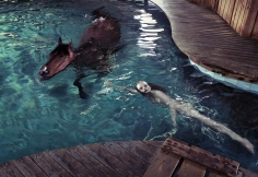 Steven Klein, Girl in Pool with Horse, 2005