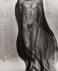 Herb Ritts, Male Torso with Veil, Silverlake, 1985