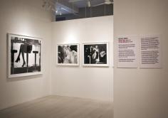 Michael Dweck, Exhibition View