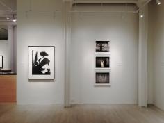 Women on Women, Exhibition View