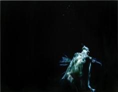 Michael Dweck, Mermaid 20