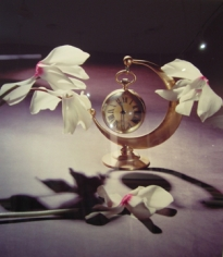Horst,  White Cyclamens with Coco Chanel's Paris Moon Clock, New York, 1988