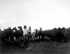 Markus, Oro Ranch, Prescott, Arizona, 1987