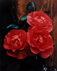 Horst, Three Roses, c. 1985
