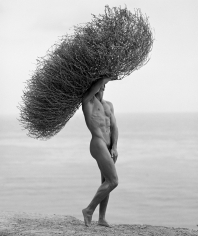 Herb Ritts, Male Nude with Tumbleweed, Paradise Cove, 1986