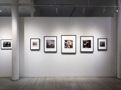 Portraits of Artists, Exhibition View
