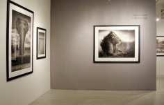 Nick Brandt, Exhibition View
