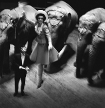 Melvin Sokolsky, Fly Elephants, Paris, 1965