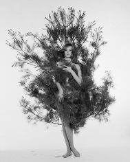 William Helburn, Nena in Fir Tree, Nena von Schlebrugge, ca. 1959