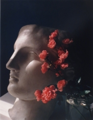 Horst P. Horst, Roses with Antique Head