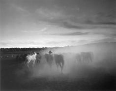 Kurt Markus, Oro Ranch, Prescott, Arizona, 1983