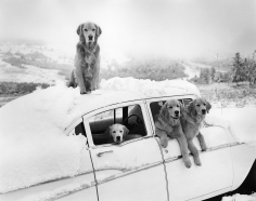 Bruce Weber, Summer Snow Storm, Little Bear Ranch, Montana, 1994