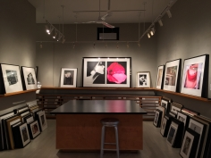 Women on Women, Exhibition View