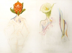 Antonio, Flower Heads, 1981