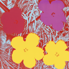 Andy Warhol,Flowers, 1970, Silkscreen, Private Collection
