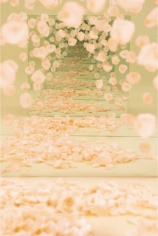 BRINTZ GALLERY, SARAH MEYOHAS, Peach Petal Speculation, 2017, Chromogenic Print, 60 by 40 inches, Edition 3 of 6, plus 2 Artist Proofs, Unique Art