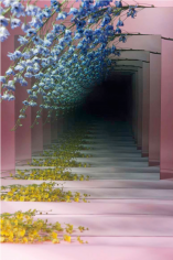 BRINTZ GALLERY, SARAH MEYOHAS, Pink and Blue Speculation, 2015, Chromogenic Print, 60 by 40 inches, Edition is 3 of 6, plus 2 Artist Proofs, Unique Art